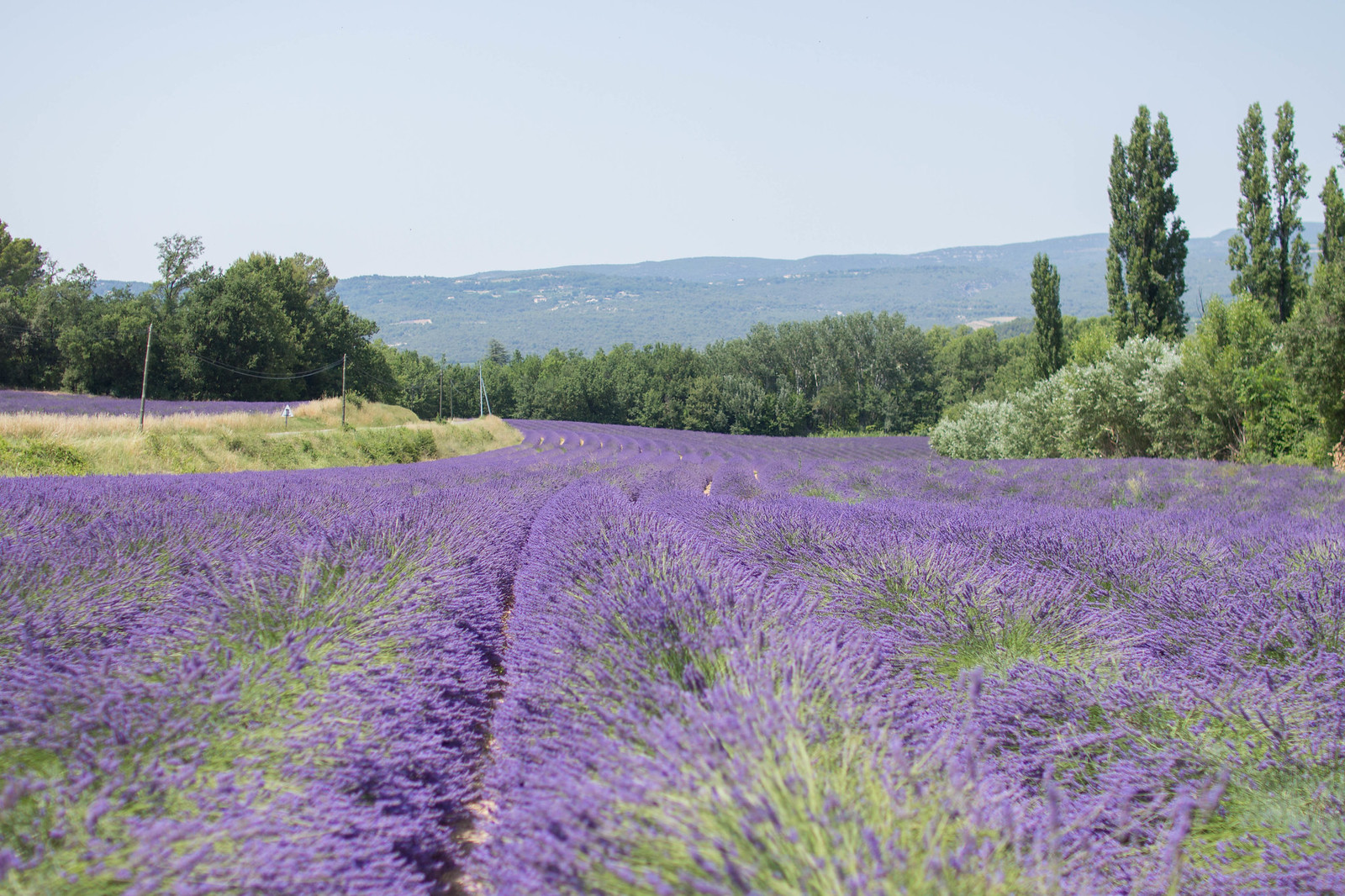 provence-188