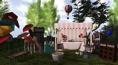 Backyard Carnival