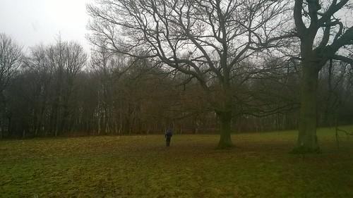 Walking near Buxted