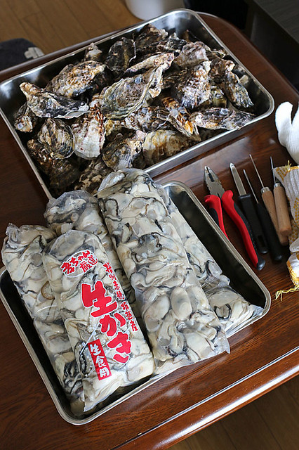 170305oysters1
