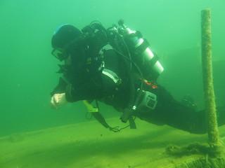 rebreather fin pivot