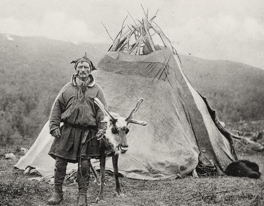 18. Pastor lapón, tienda y reno. 1909. Autor, Saamiblog