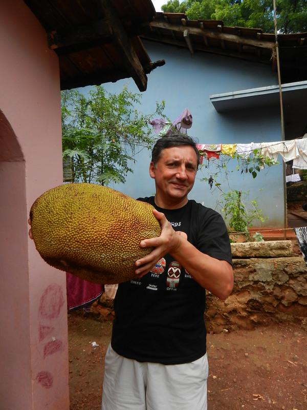 Джек-фрут Шри Ланка для еды