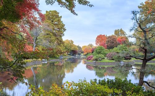 autumn trees reflection fall garden stlouis missouri missouribotanicalgarden