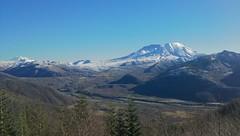 Mt St Helens trip 2014 (8)