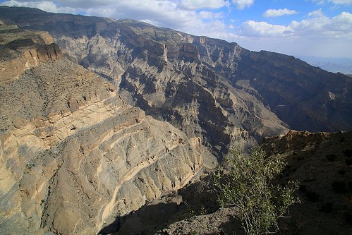 canyon oman img2064