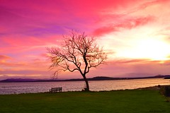 Dalgety Bay sunset, got in Fife Free Press....