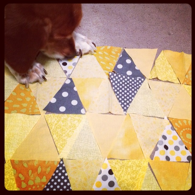 Beau isn't sure about this layout... #yearofmaking