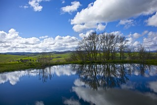 Tuscan Reflections