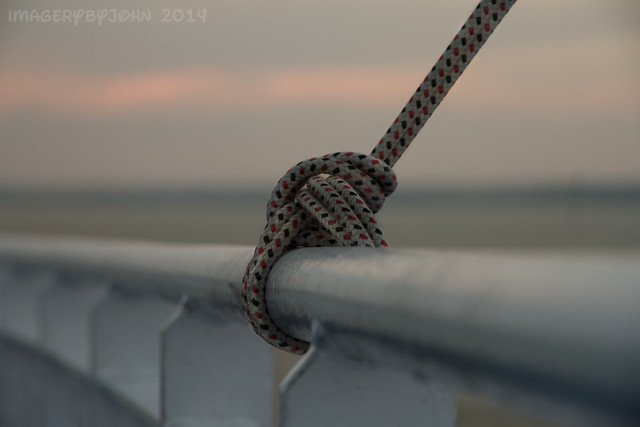 Y Knot Fence Friday