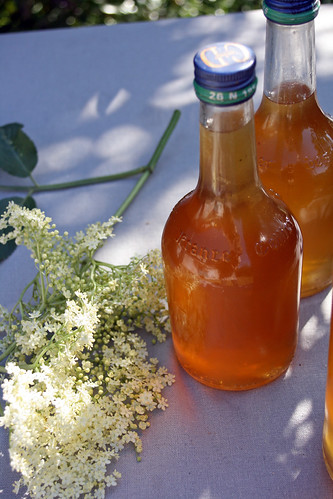 8956106189 eed5e48183 Elderflower cordial