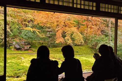 【写真】2012 紅葉 : 瑠璃光院/2020-06-07/IMGP7683