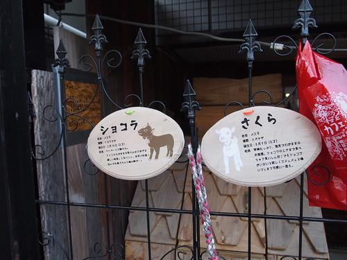 桜丘カフェ 渋谷