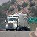 A shipment carrying Los Alamos transuranic waste heads down NM 502, bound for the Waste Isolation Pilot Plant in southeastern New Mexico.