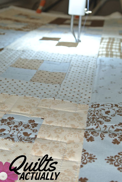 Blue and Brown on longarm 2