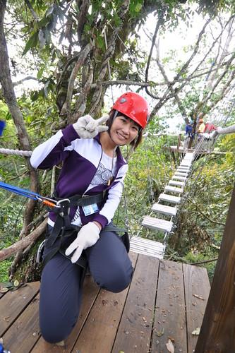 走在樹冠層上方,是完全不同的生態體驗。雪霸國家公園管理處提供。