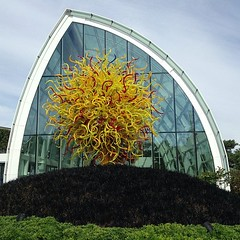 Have I mentioned: Chihuly? #seattle