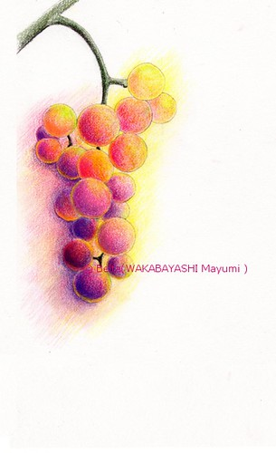 2013_09_26_grape_02_s by blue_belta
