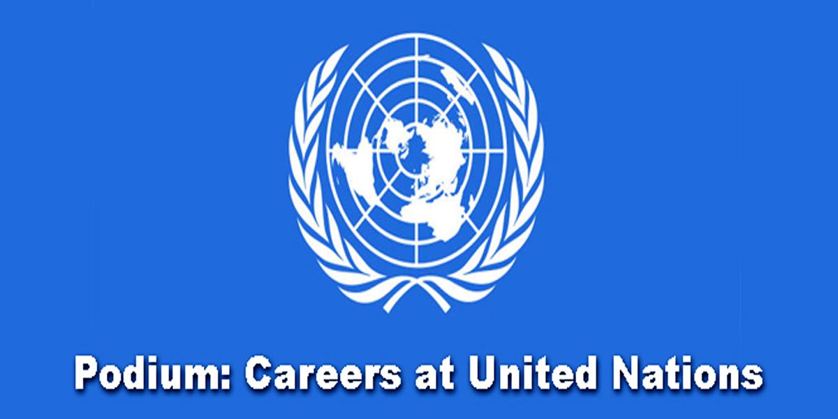 संयुक्त राष्ट्र संघ में करियर