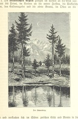 Image taken from page 337 of 'Die Alpen. Handbuch der gesammten Alpenkunde'