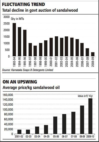 sandalwood price