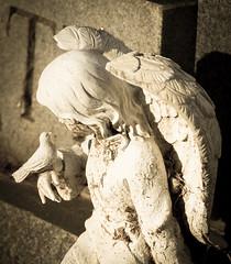 Cemetery Figurine Macro Study