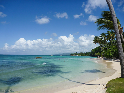 vacation holiday seascape dominicanrepublic palmtrees caribbean seashore beachholiday clearsea cayolevantado bacardiisland gideonc panasonicdfcft1