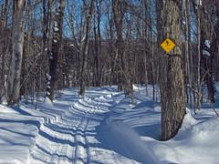 Parc Campeur Trails at Ste Agathe des Monts
