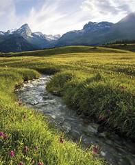 Pastvina Alp Flix vnadmořské výšce 1900m