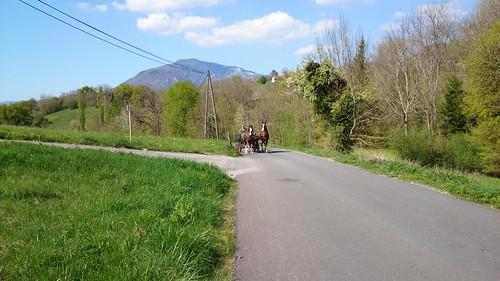 walk to arcine from leaz