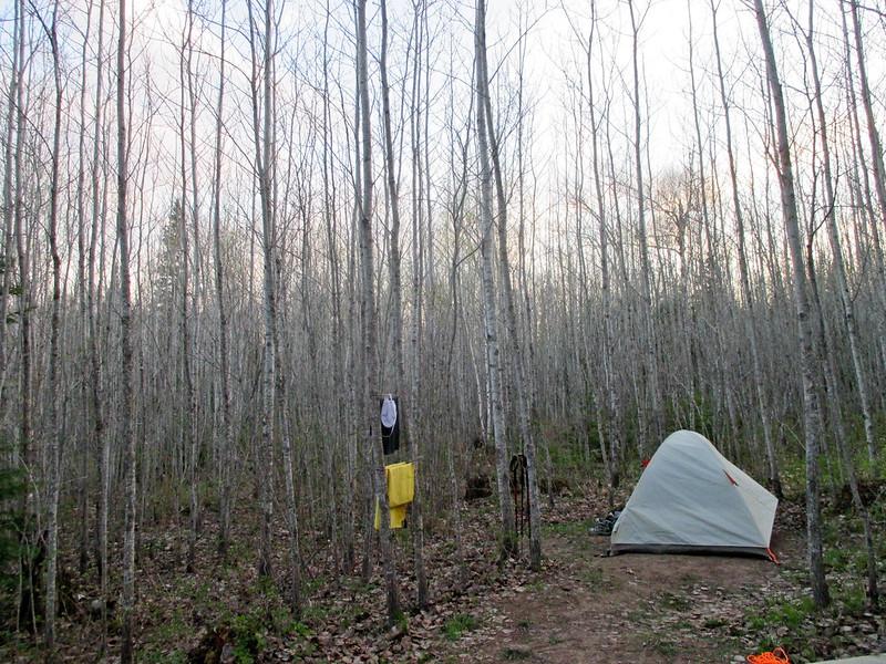 McCarthy Creek Campsite