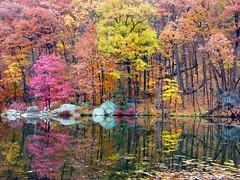 Colorful Fall Reflection