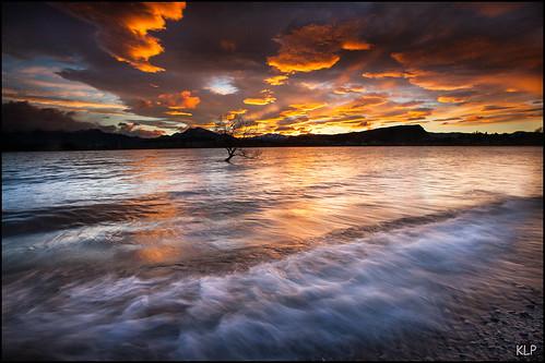 new longexposure newzealand lake tree clouds sunrise canon island dawn waves south tripod wave zealand southisland otago 5d wanaka 1740mm polariser gndfilter otagonz