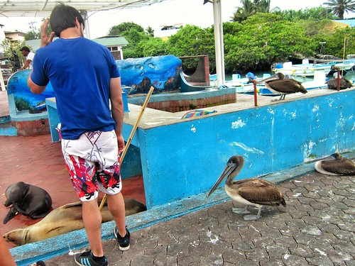 Six Days for $900: Doing the Galapagos on a Budget