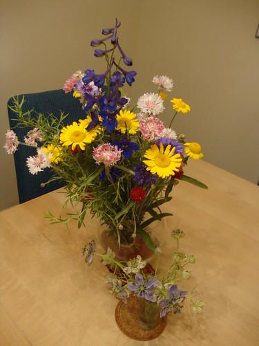 Princeton Farmers Market flowers 6/20/13