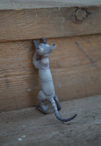 Cat by Oleum's doll