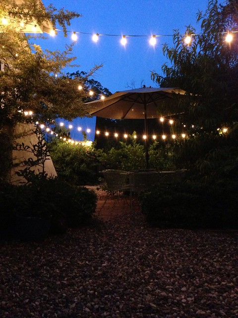 the biergarten under lights