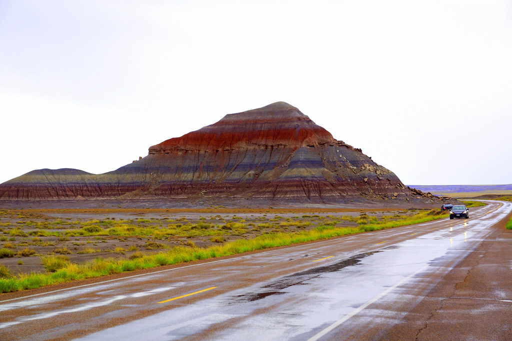 Petrified Forest National Park----Petrified Forest