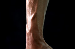 arm, human leg, brown, skin, limb, close-up, organ,