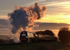 Steam Moods