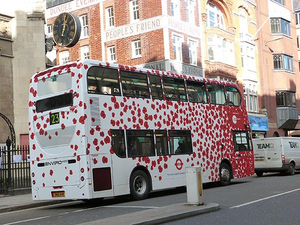 poppy bus