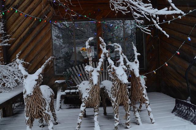 2013-12-15-Winter-229