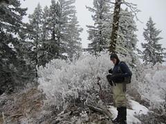 Cragar on the summit of Beaver Hill
