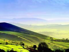 A E Housmans Blue Hills