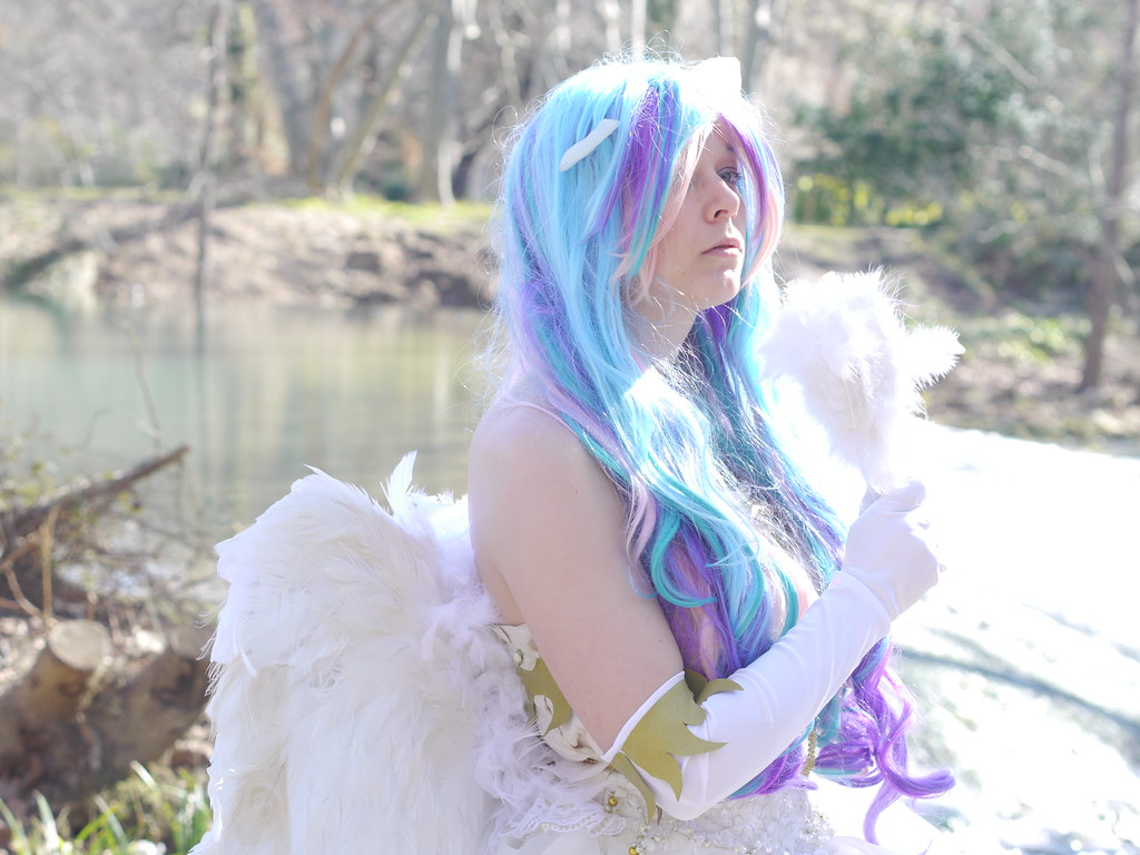 related image - Shooting Celestia - My Little Pony - 2014-02-23- P1780610