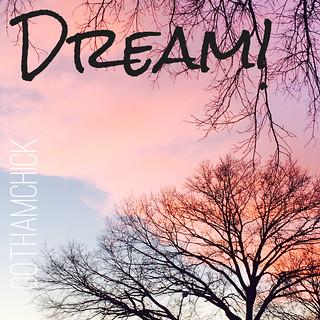 Dream!!