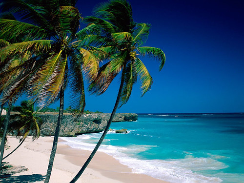Beautiful beach in Barbados, Caribbean