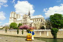Travels of badger - Notre-Dame de Paris in Spring