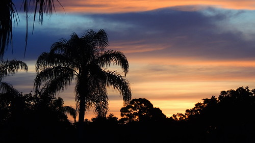 morning blue trees red wallpaper orange sun color weather silhouette yellow night palms landscape nikon flickr tropical coolpix p510 mullhaupt cloudsstormssunsetssunrises jimmullhaupt