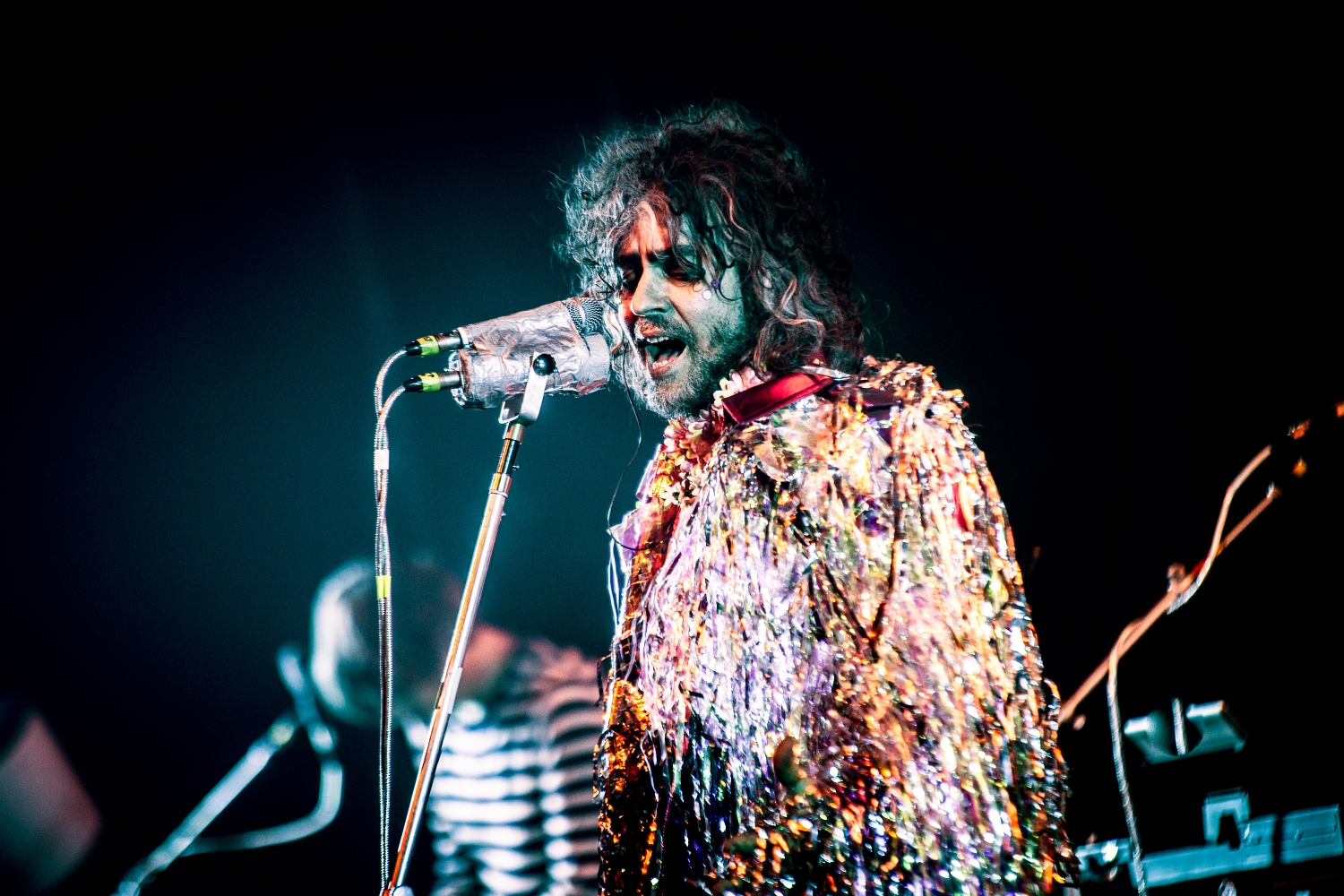 The Flaming Lips 43